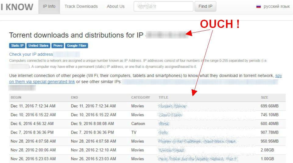 CheckMyTorrentIP Alternatives (How to Confirm your Torrent
