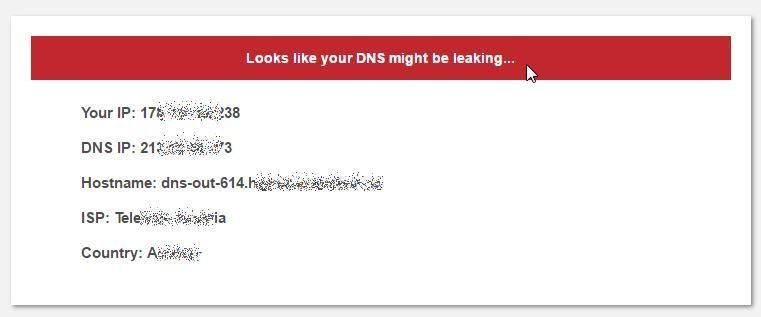 Screenshot of DNS leak test in progress