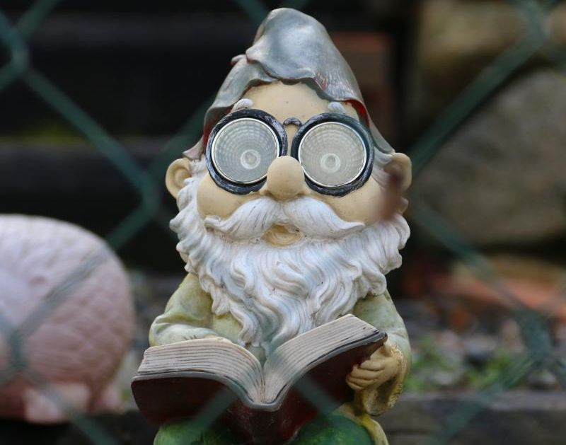 Cute garden gnome reading a book.