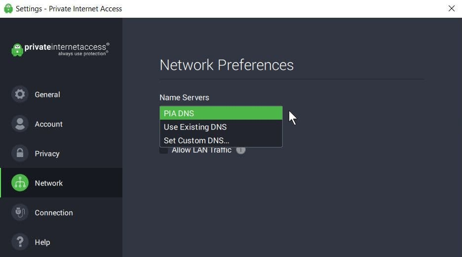 Screenshot of PIA DNS Server settings in Preferences.